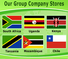 Group Company Stores